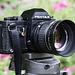 K50 lenshood