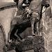 Der berühmteste Reiter der Welt - The most famous horseman in the world