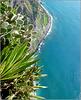 Funchal : Un tuffo da brivido a Cabo Girao
