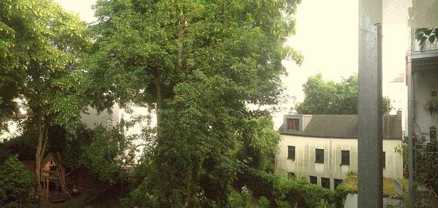hinterhof 1960