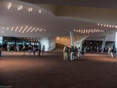 Elbphilharmonie Hamburg, The Plaza