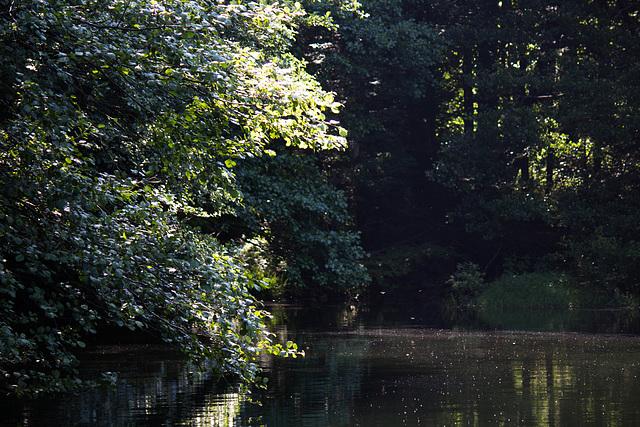 lac d'Alfeld