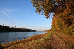 Der Rhein bei Sonnenschein