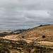 Dartmoor - 20180322
