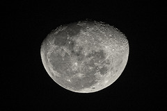 caribbean moon