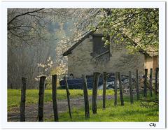 Le printemps en Franche-Comté