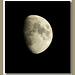 Moon (36)