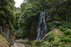 Azores, Island of San Miguel, Waterfall in Natural Park of Ribeira dos Caldeirões