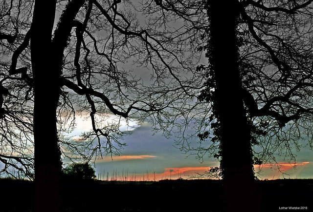 Baumfenster im Landschaftsgarten von Schloß Dyck