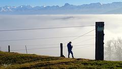 high foggy fence