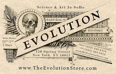 evoluado-magazeno Soho