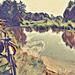 Лесная речка около поселка Новоельня