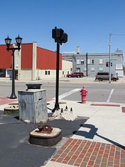New look of Bay City: a corner of an intersection.