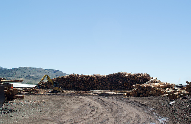 Lakeview OR sawmill (#0088)