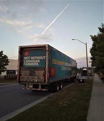 Camion de vidanges / Garbage truck