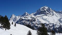 Eiger, Mönch, Jungfrau & paraglider