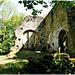 Ruines de l'ancienne église romane de Saint André des Eaux (22)