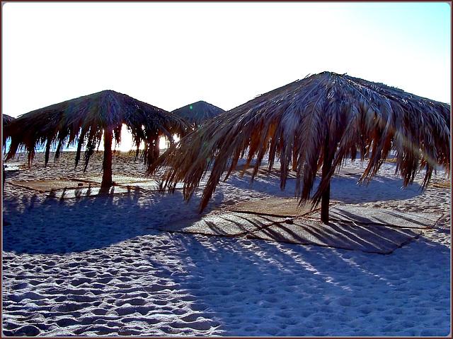 HURGADA : gli ombrelloni dell'isola Giftun
