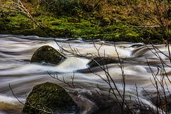 River Dart - 20180323