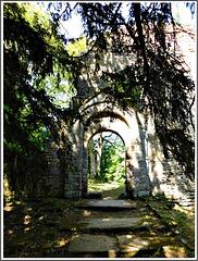 Les ruines de l'ancienne église romane de Saint André de Eaux (22)