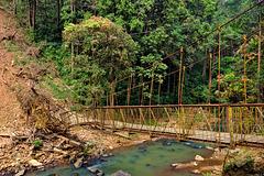 Broken rope bridge