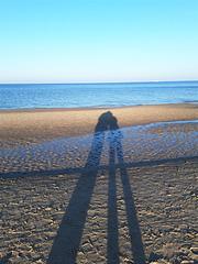 Unsere Schatten...