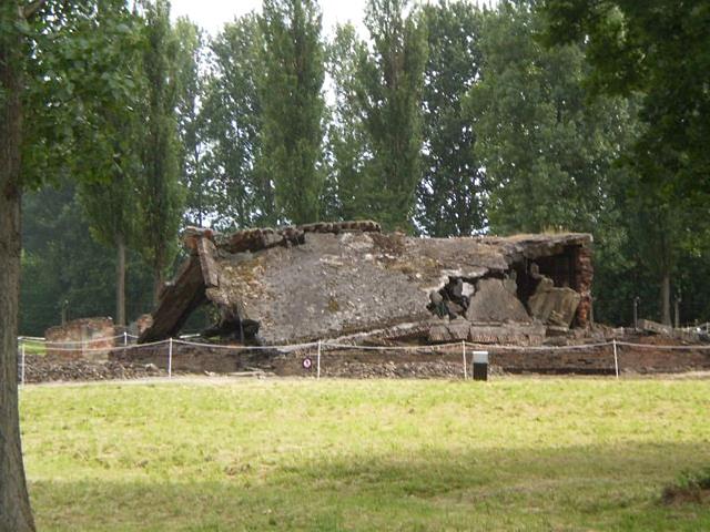 Auschwitz-Birkenau gas chambers.