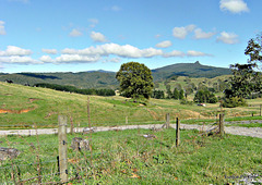 Looking toward the hills