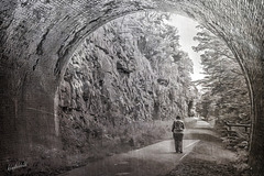 Rusher Cutting Tunnel   /   June 2021