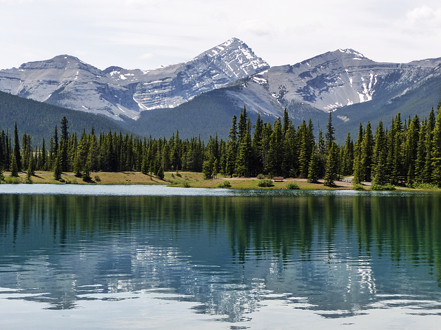 Forgetmenot Pond, Kananaskis