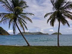 Tropical beach beauty, Tobago