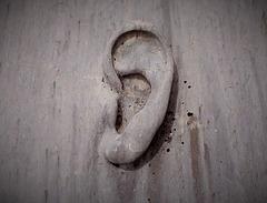 My ear is of stone