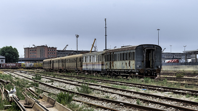 Abandoned Trieste - lost train watched by seagull