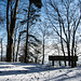 Winter 2018/2019 auf dem Uetliberg (© Buelipix)