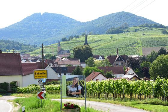 Birkweiler in de Südpfalz