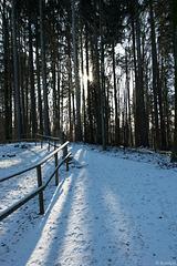 Winter 2018/2019 auf der Felsenegg (© Buelipix)