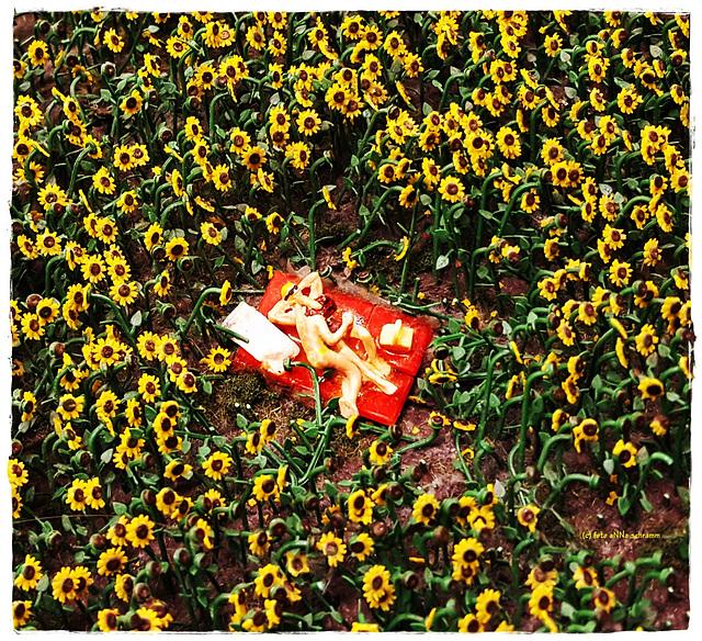 Erotik im Sonnenblumen-Feld (PiP)