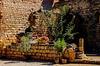 L'Abbaye de Fontcaude: A View inside