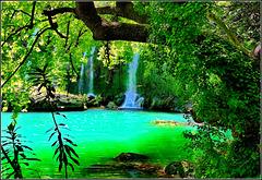 Kursunlu : il laghetto si colora del verde circostante