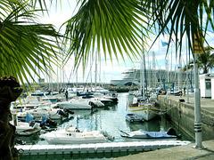 Funchal Hafen. ©UdoSm
