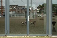 Niederlande - Den Helder DSC09404