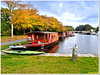 Houseboats preparing for winter