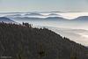Wolkenmeer über der Oberrheinebene vom Schliffkopf, 1.053,6 m