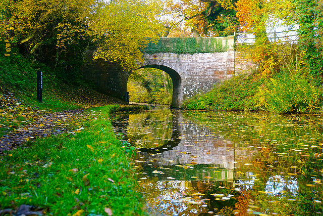 Shropshire Union Canal at Gnosall