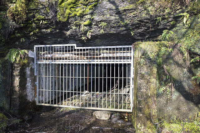 Raasay: No.1 Ironstone Mine adit entrance (intake) 2