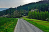 Spaziergang mit Lamas - A walk with Ilamas