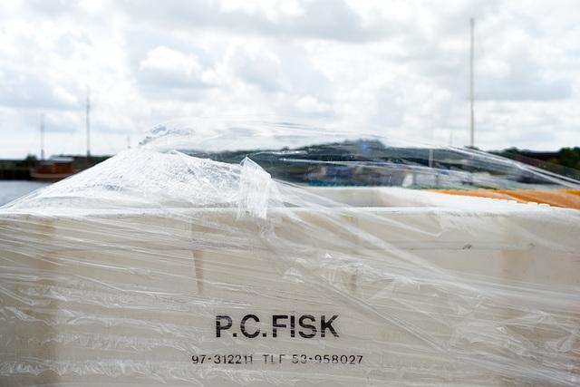 -fischkiste-02874-co-16-06-17