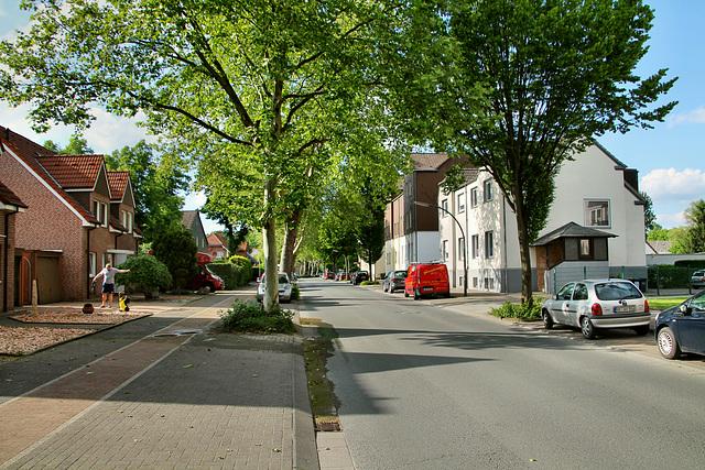 Alte Grenzstraße (Recklinghausen) / 25.05.2019