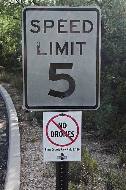 No Drones Allowed