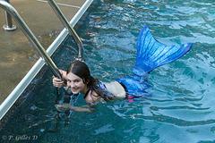 La petite sirène bleue